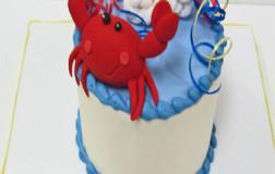 Baby Cakes_21