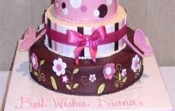 Pink & Brown BABY Cake