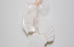 Scalloped Shell Cookie