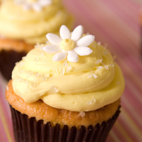Lemon Burst Cupcake