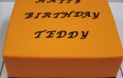 Birthday Cake for Teddy