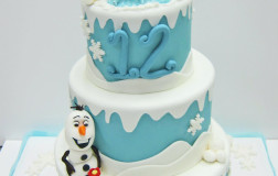 frozen cake11